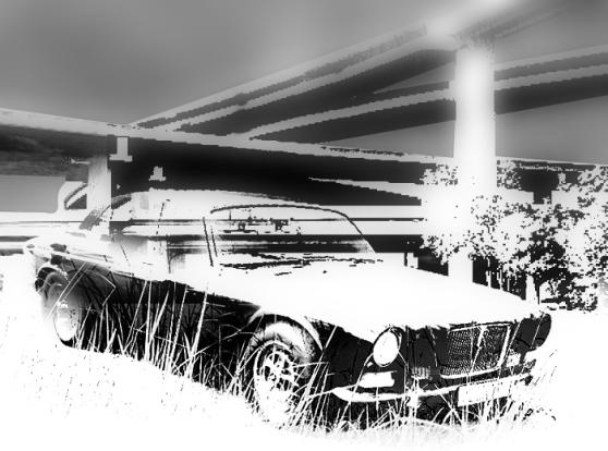 Jaguar-Concrete-Island